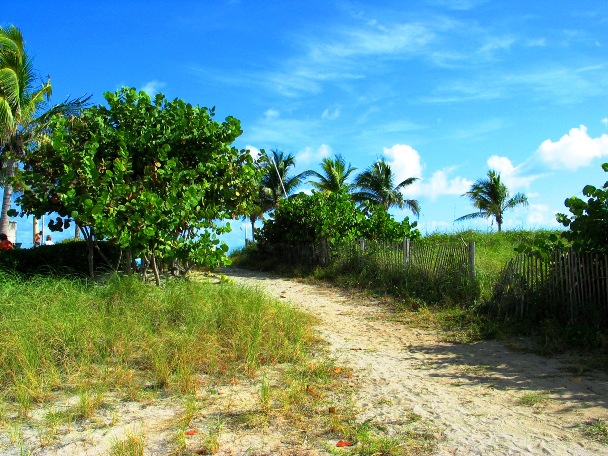 Path to the Beach - © 2oo9 JiMmY RocKeR PhoToGRaPhY
